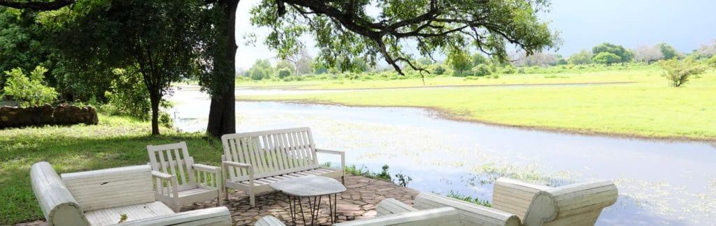 Luangwa views